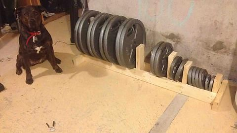 diy weight rack  at home gym diy home gym weight rack
