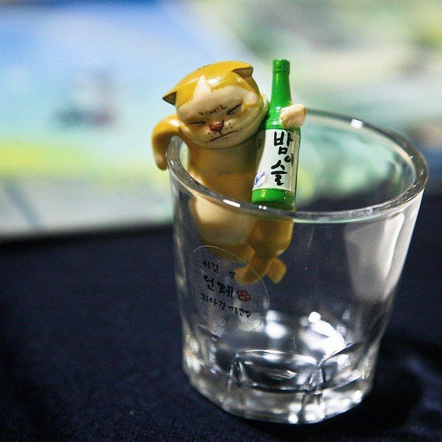 Adorable little kitty characters! This little guy is not letting go of his soju. A true badass Korean street cat! 길냥이키츠 Kitz the Street Cat by Floating Island Studio #streetcats #animals #cats #soju...