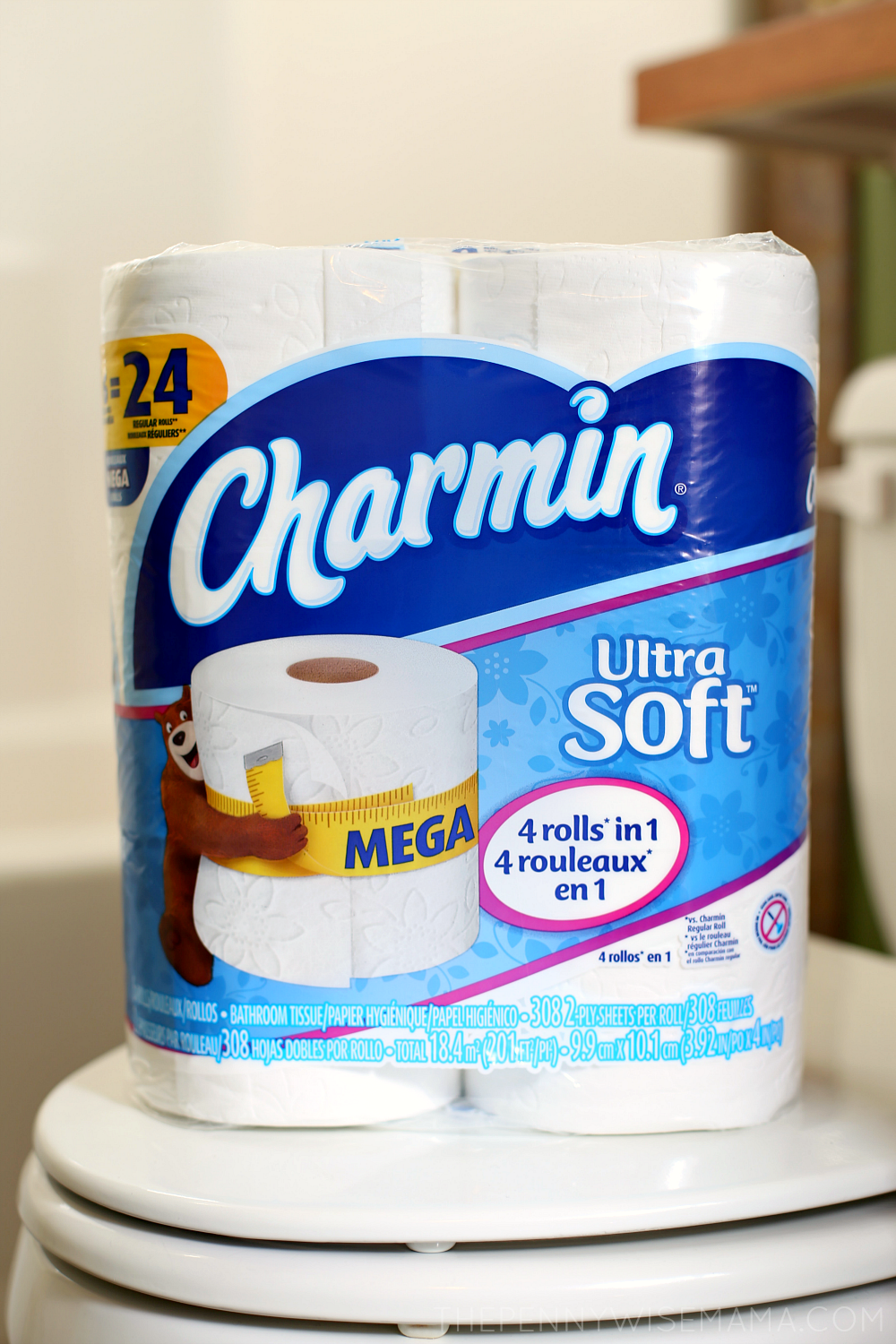 Last Minute Thanksgiving Getaways: Make Sure You Stock Up On Charmin Ultra Soft Mega Roll For