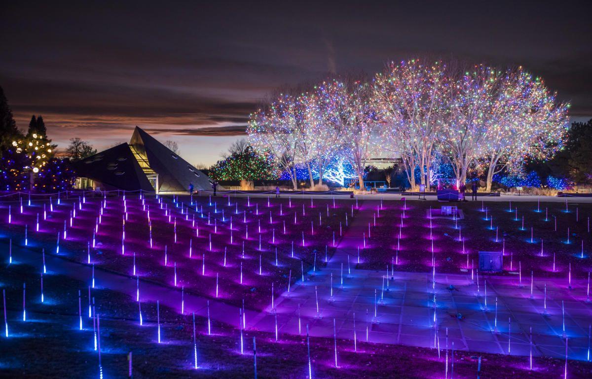 Denver Botanic Gardens Christmas Lights 2019 BLOSSOMS OF LIGHT NOV 23, 2018   JAN 1, 2019 Denver Botanic