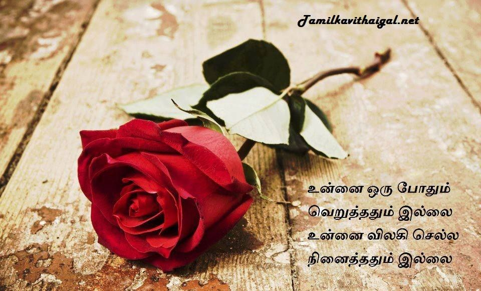 Love Kavithai In Tamil Images Vinoth Love Love Images Love Quotes