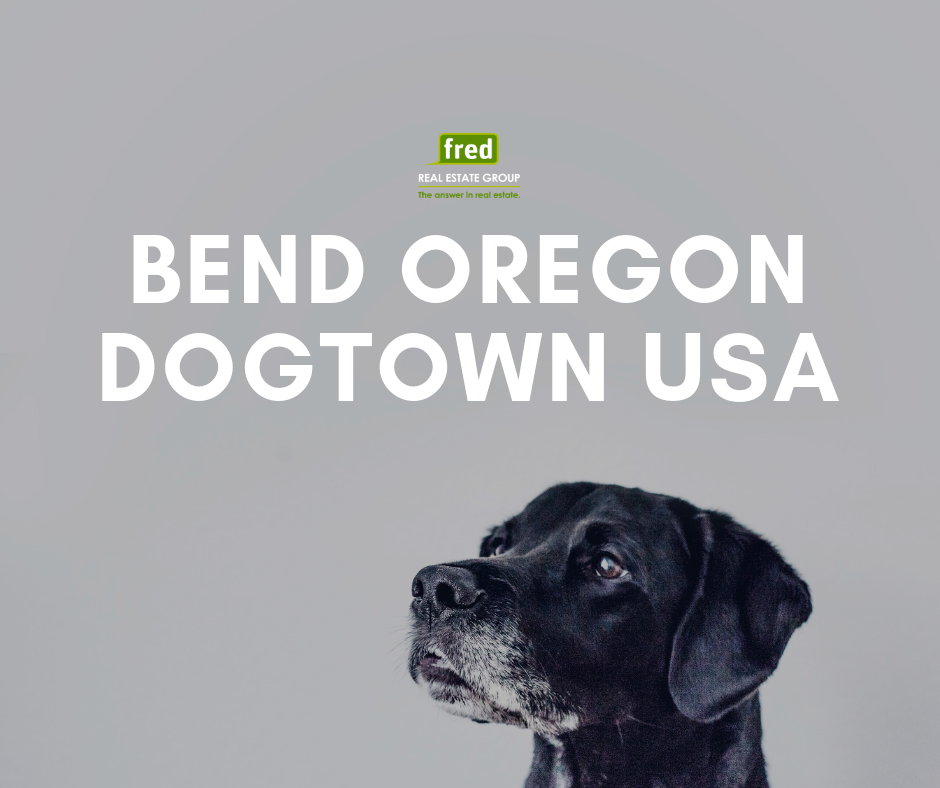 5 Ways Dogs Live The Good Life In Bend, Oregon Life is