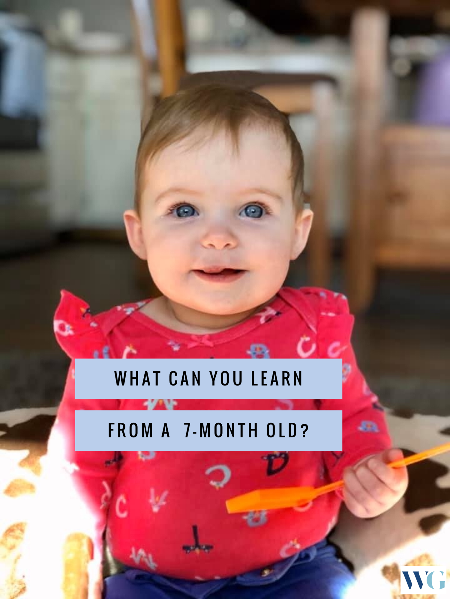 What Can You Learn From A 7 Month Old