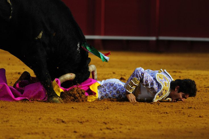 Cristina Quicler—AFP/Getty Images April 15, 2013. French matador Sebastian Castella is gored by a bull during a bullfight at the Maestranza bullring in Sevilla.