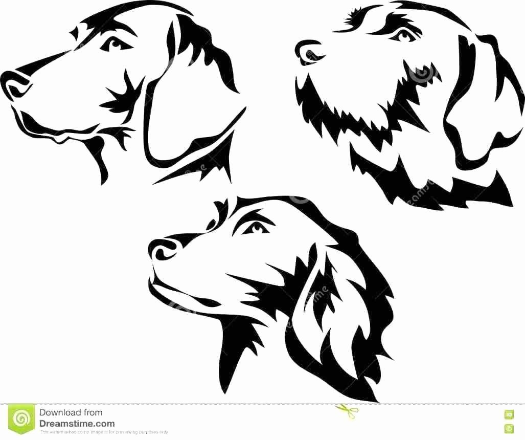 Coloring Page Tree Kangaroo Luxury Australian Shepherd Coloring