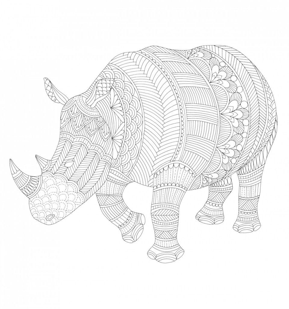 free wild savannah colouring pages chats savannah