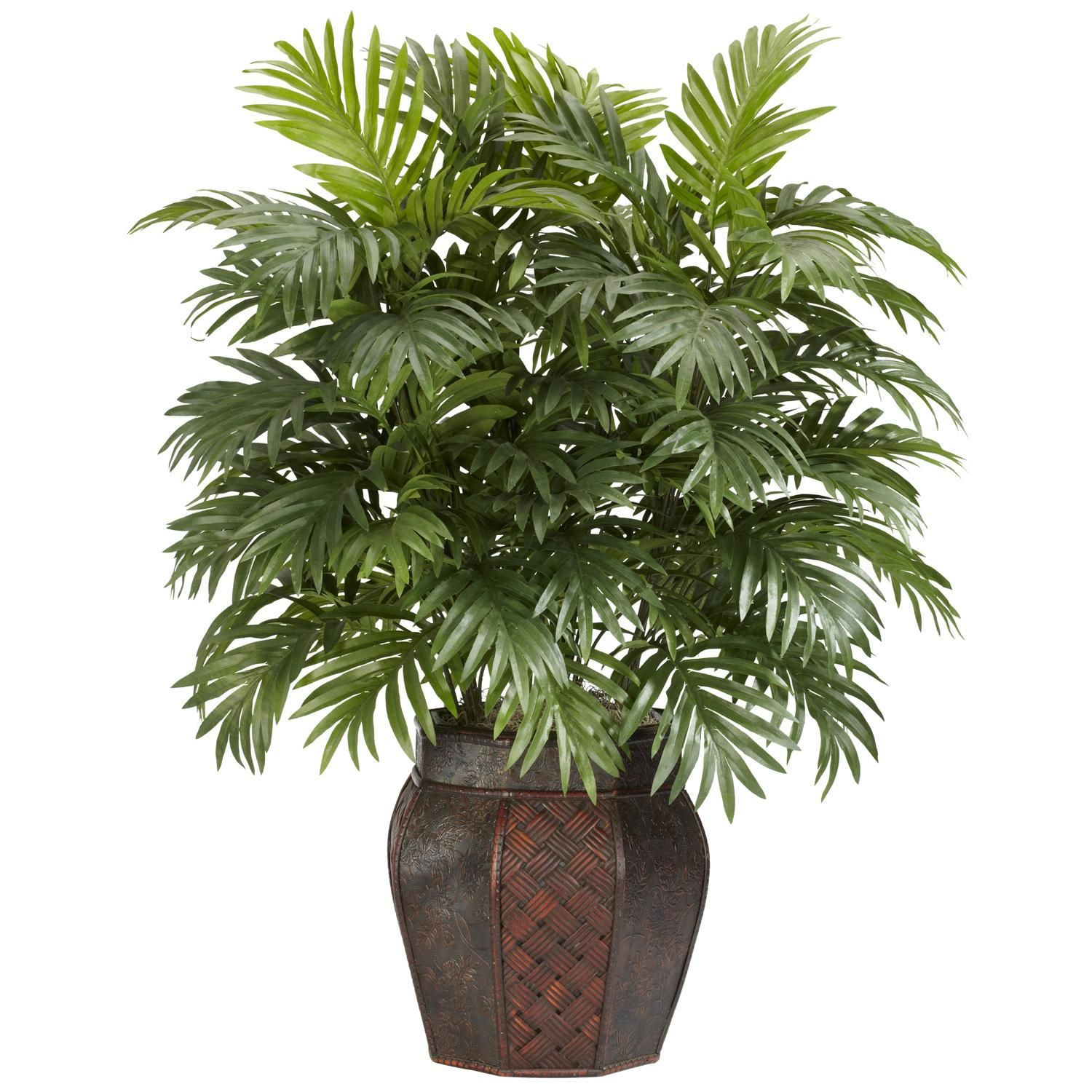 Add elegance to your home with this decorative 38-inch Areca palm plant.  This