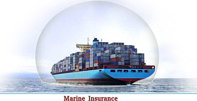 Mckenzie Ross Offers Marine Transit Insurance That Covers Any