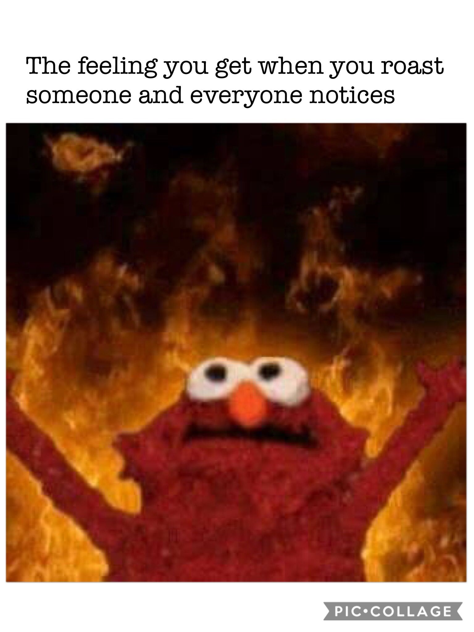 Pin By Riley C On Memes Funny Relatable Memes Elmo Memes