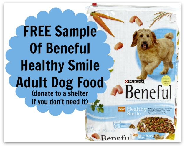 Free Sample Of Beneful Healthy Smile Dog Food Http Www