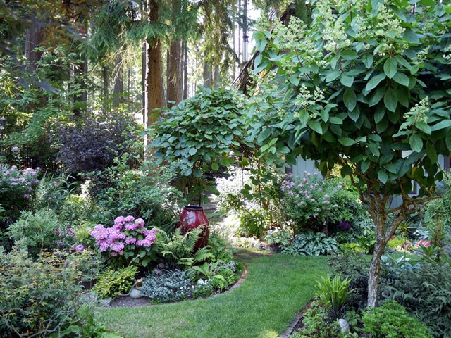 A Lively & Colorful Shade Garden in the Pacific Northwest - FineGardening