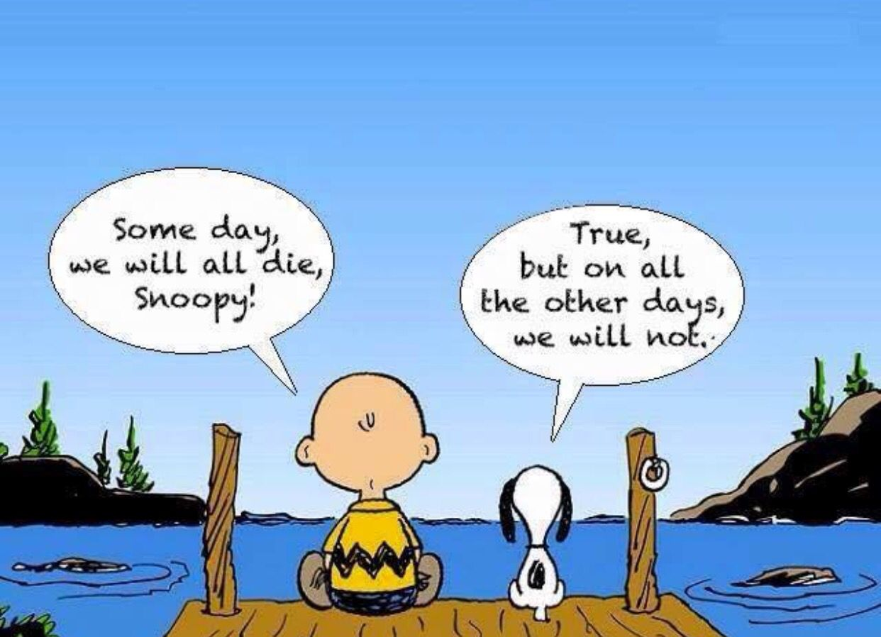 Zen Master Snoopy...   Snoopy quotes, Inspirational quotes, Words