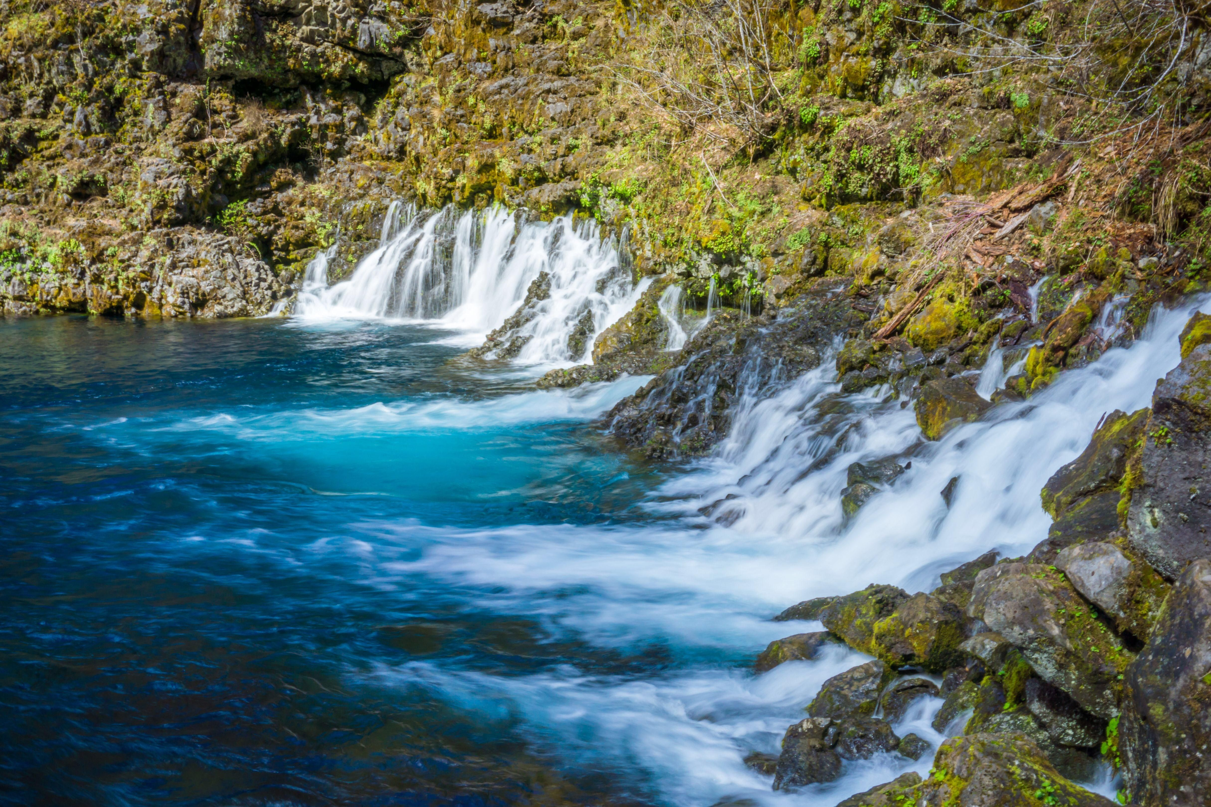 The Falls At Tamolitch Blue Pool In Oregon The Water Comes Straight Through The Lava Rocks