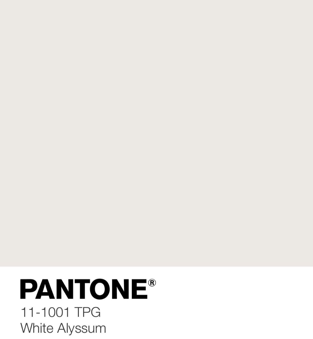 Pin By Pantone Color Files On White Pantone 11 1 Pantone Color Swatches 3 Storey House Design