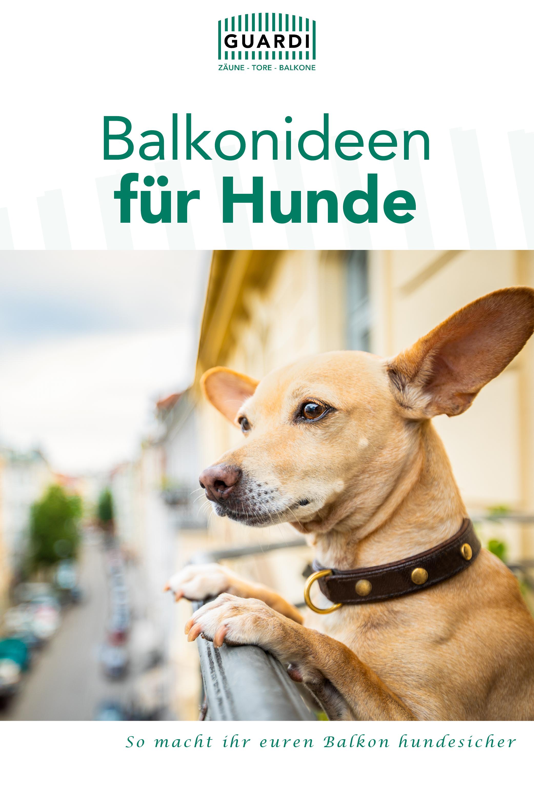 Balkonideen Fur Hunde So Macht Ihr Euren Balkon Hundesicher Guardi Balkon Ideen Balkon Hunde