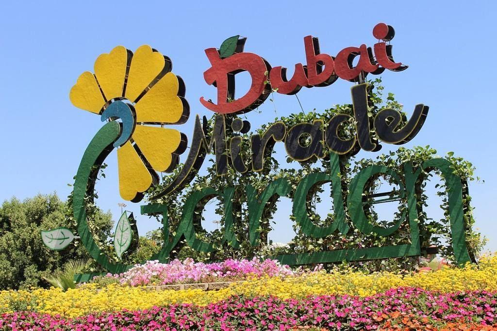 ميراكل جاردن تحفة فنية تزين الصحراء تقع حديقة معجزة دبي ميراكل جاردن في جنوب البرشاء من دبي لاند وتمثل أكبر حديقة زهور طبيعي Miracle Garden Dubai Flower Garden