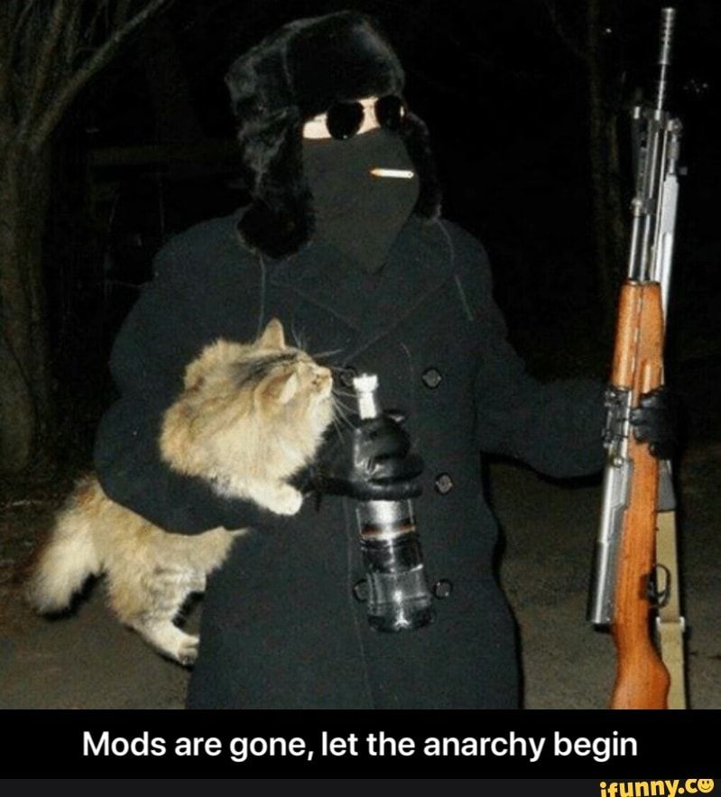 Mods Are Gone Let The Anarchy Begin Mods Are Gone Let The Anarchy Begin Ifunny Funny Memes Memes Stupid Memes