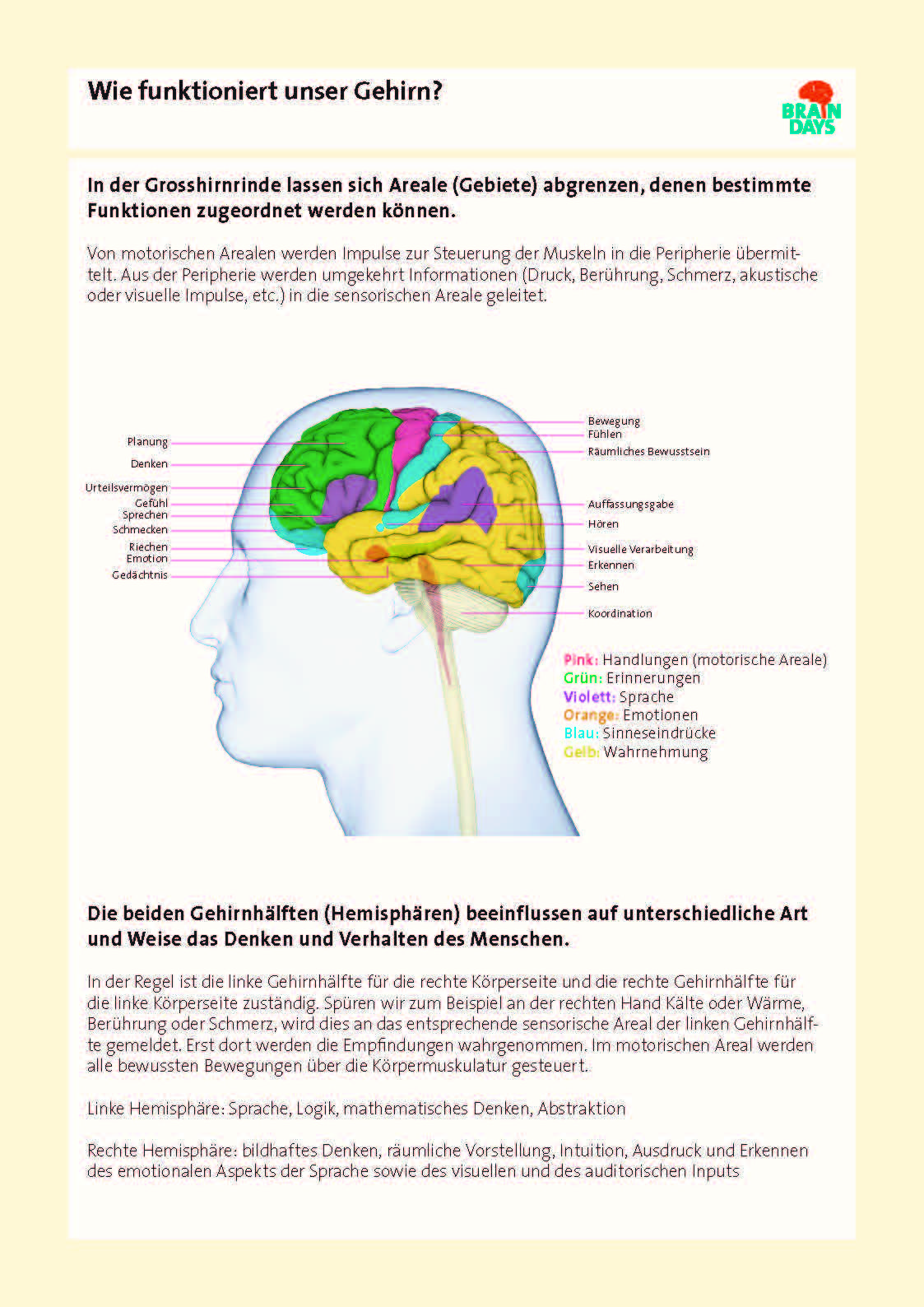 SimplyScience - Brain Days - Unser Gehirn | Neurowissenschaften ...