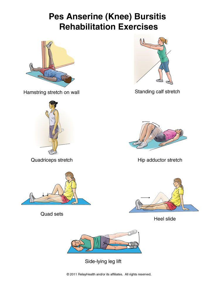 Anserine Bursitis Exercises   www.pixshark.com - Images ...