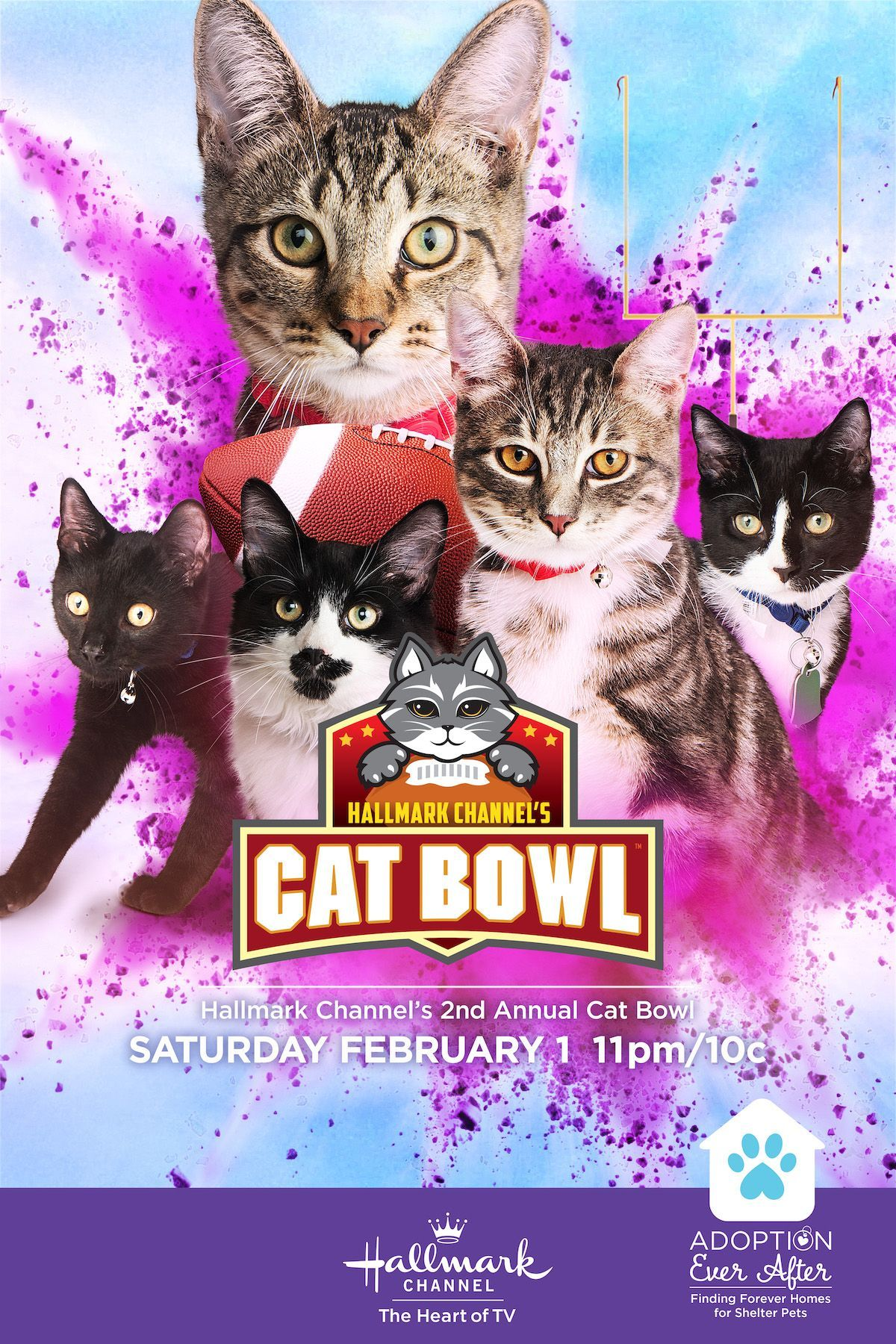 Cat Bowl Ii Featuring Senior Cats Ready For Action And Adoption Premieres On February 1 Only On Hal In 2020 Christmas Movies On Tv Cat Bowls Family Christmas Movies