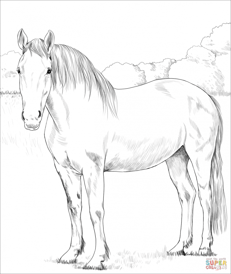 Free Download Printable Irish Draught Horse Coloring Pages Horse Coloring Horse Coloring Books Animal Coloring Pages