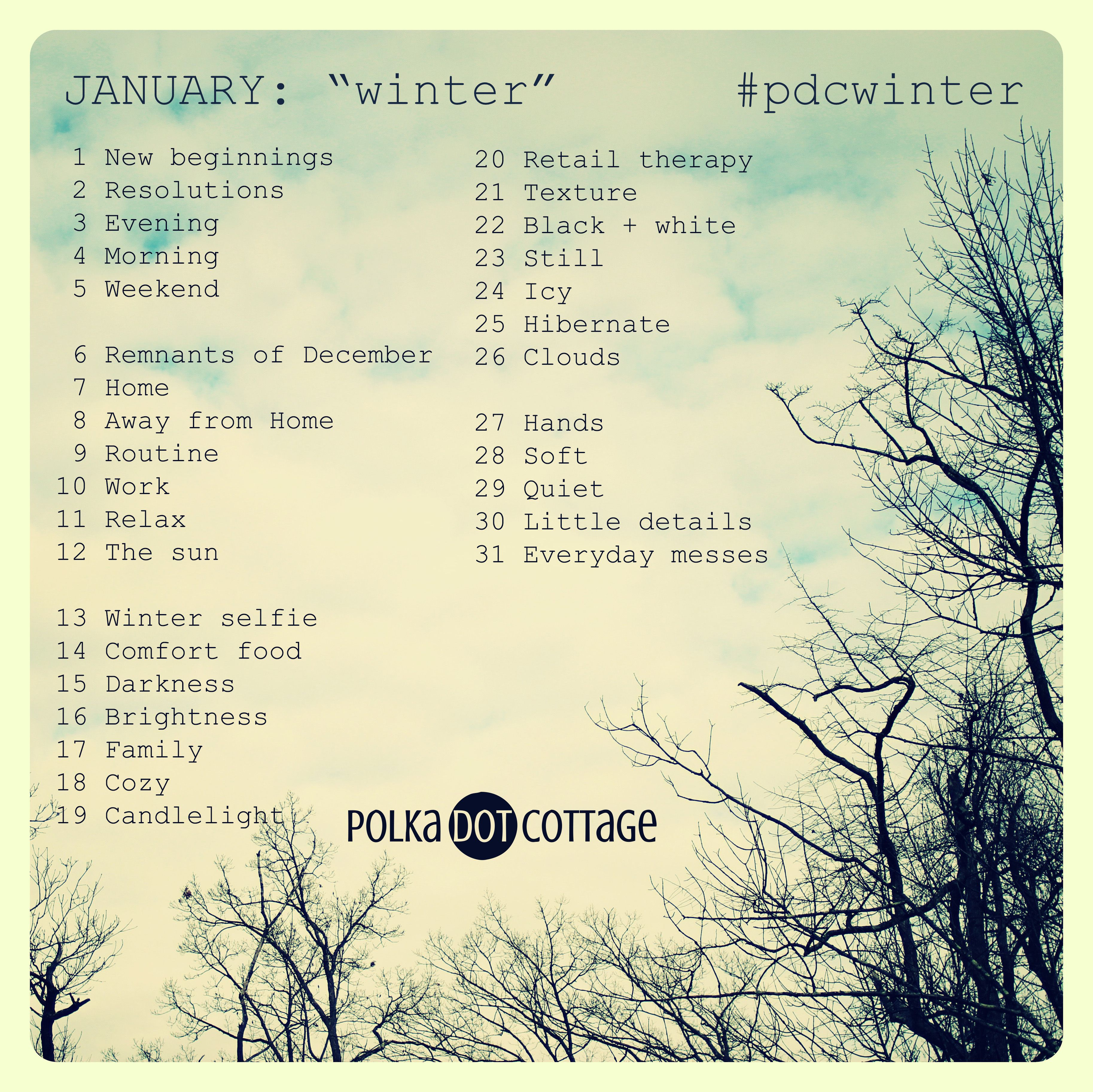 Polka Dot Cottage photo prompts for January 2014. Theme: Winter! Hashtag #pdcwinter