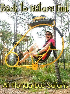 Florida Eco Safaris Provides Back to Nature Fun | Steel ...