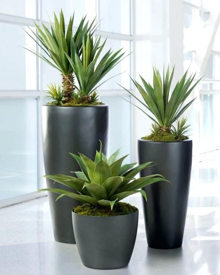 Ceramic Pots For Indoor Plants Online India Pots For Large