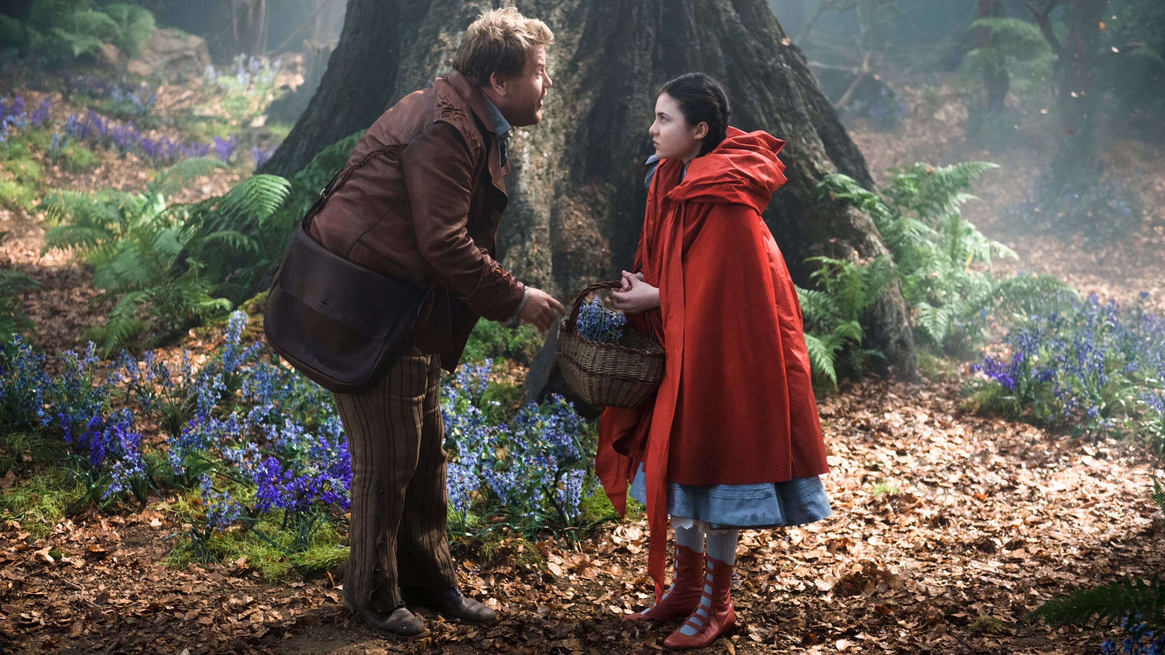 Watch Into The Woods 2014 Full Movie Online Free In A Woods Filled With Magic And Fairy Tale Characters A Baker And His Wife Film Cappuccetto Rosso Cinema