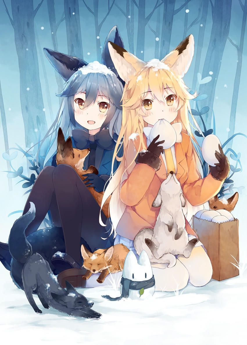 Foxes in the snow  Kemono Friends - Tsuchinoko drinking  Kemono