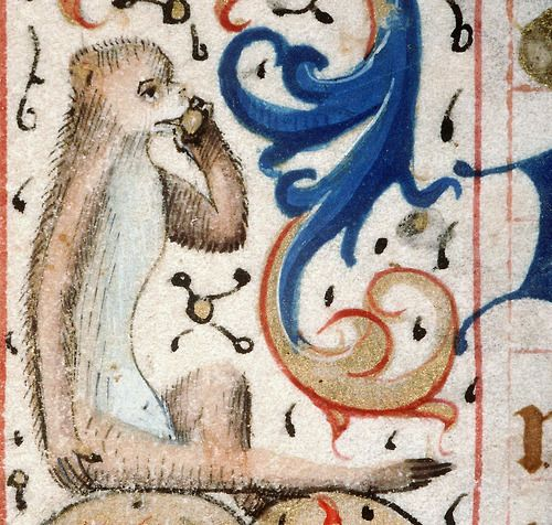 Monkey (not on the phone) Book of Hours, France 15th century Amiens