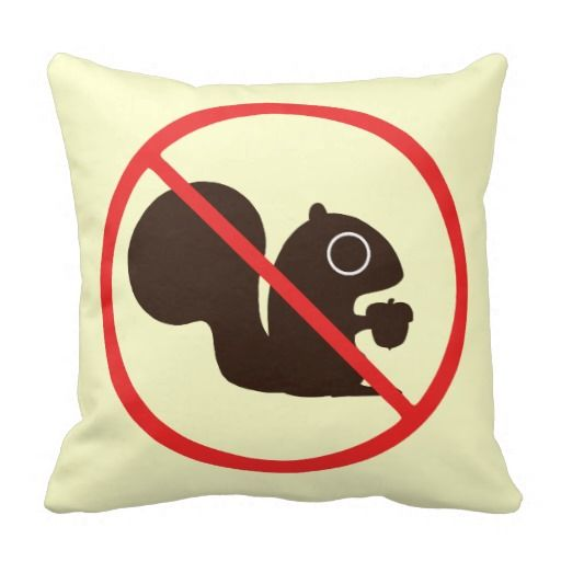 Keine Eichhörnchen Zierkissen