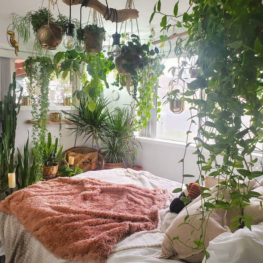 "urban jungle bloggers™ on instagram: ""jungle mornings be"
