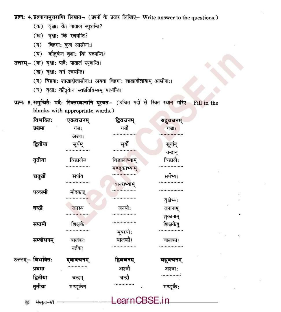 Ncert Solutions For Class 6th Sanskrit Chapter 5 Dvitiiyaa Vibhakti Talakaara C 05 Sanskrit Sanskrit Quotes Solutions [ 1077 x 972 Pixel ]