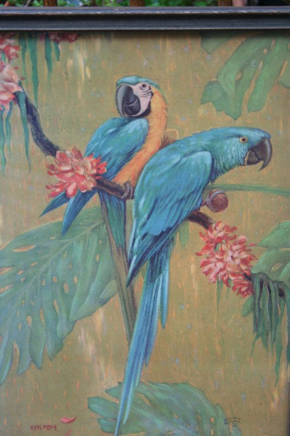 Parrot Print by Karl Plath 1927 MACAWS by sixpencebluemoon on Etsy ...