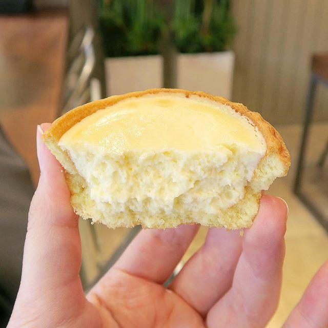 WEBSTA @ hyeyeon9878 - 파바 치즈타르트-요고 맛있따 🌝❤멀리 빵투어 댕기고싶댜😥프렌차이즈 정복하겠어......#먹스타그램 #빵스타그램 #음식 #파리바게트 #타르트 #치즈타르트 #빵 #치즈 #foodstagram #eatstagram #food #instafood #delicious #tasty #eat #tart #chessetart #parisbaguette #chesse