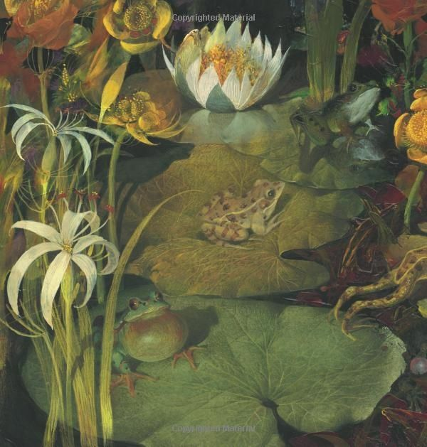 Frog Song, by Brenda Z. Guiberson, illustrations by Gennady Spirin. Published by Henry Holt & Co, 2013