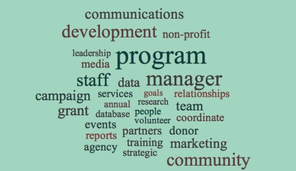Non Profit Management Resume Examples Resume Examples Pinterest