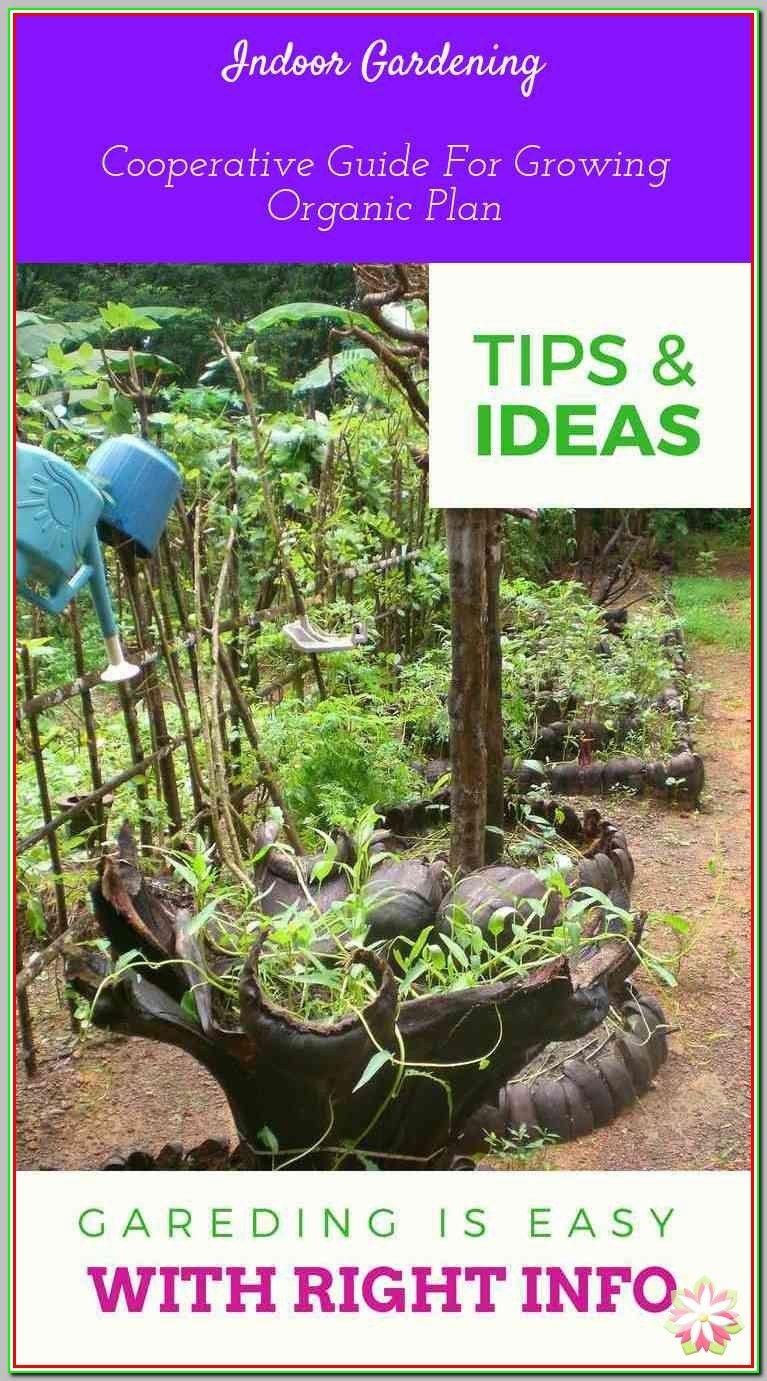 0c1dc11595a239d37ae8d77974c3ff04 - How Does Ph Affect Plant Growth And Gardeners Gardens