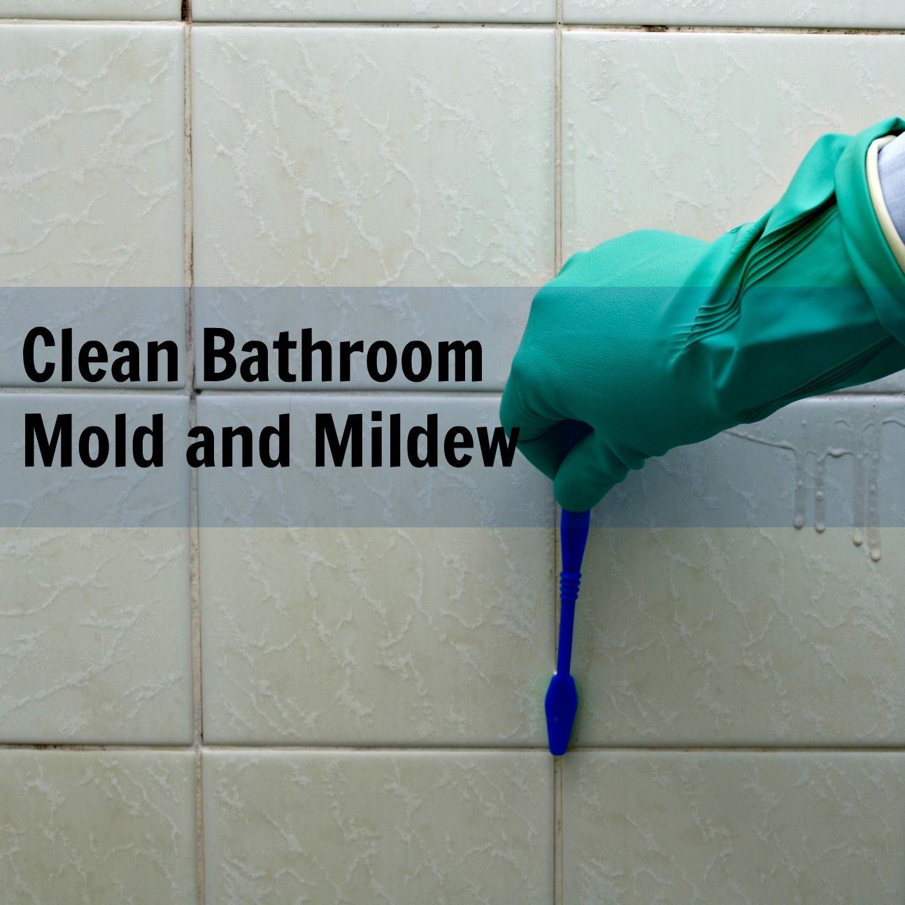 how to clean mold on shower caulk