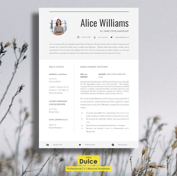 Professional Resume Template Professional resume template