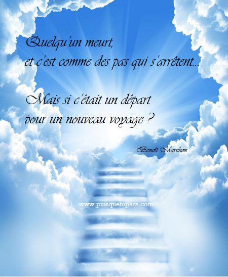 Espace deuil r confort texte de condol ances avec image for Maladie poules perte plumes