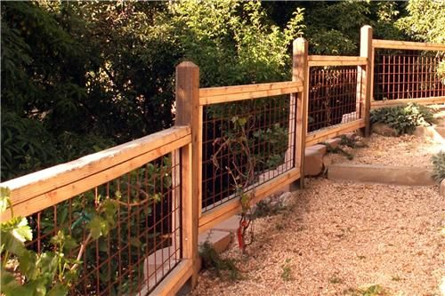 fence design on pinterest fencing garden fences and