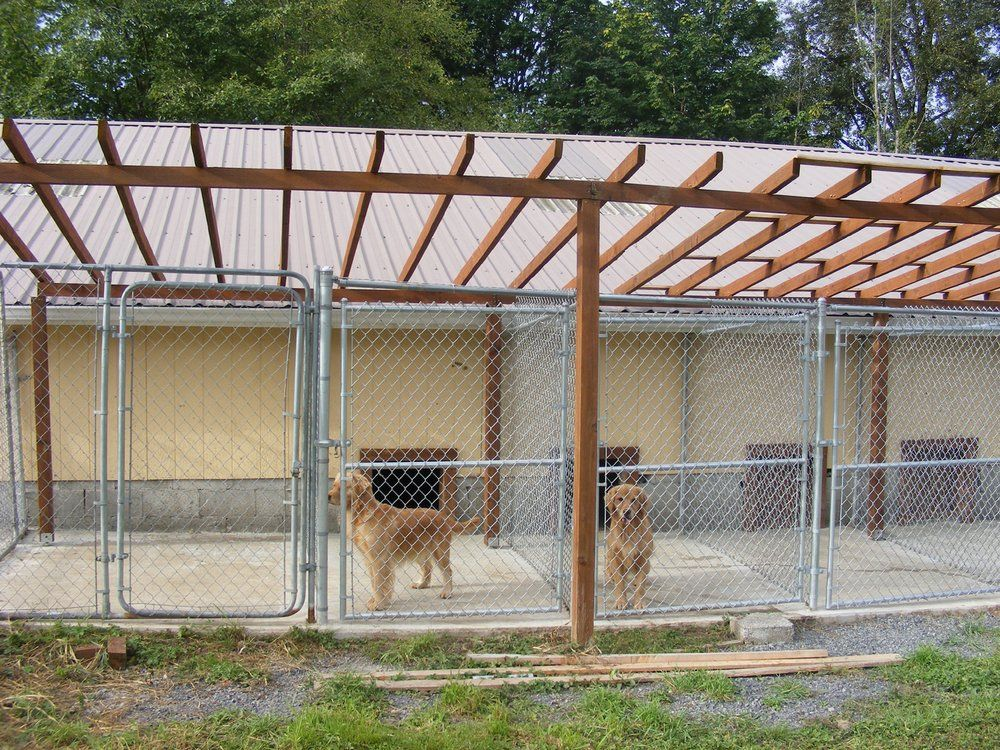 Building an outdoor dog kennel jpg dog kennels for Dog run outdoor kennel house