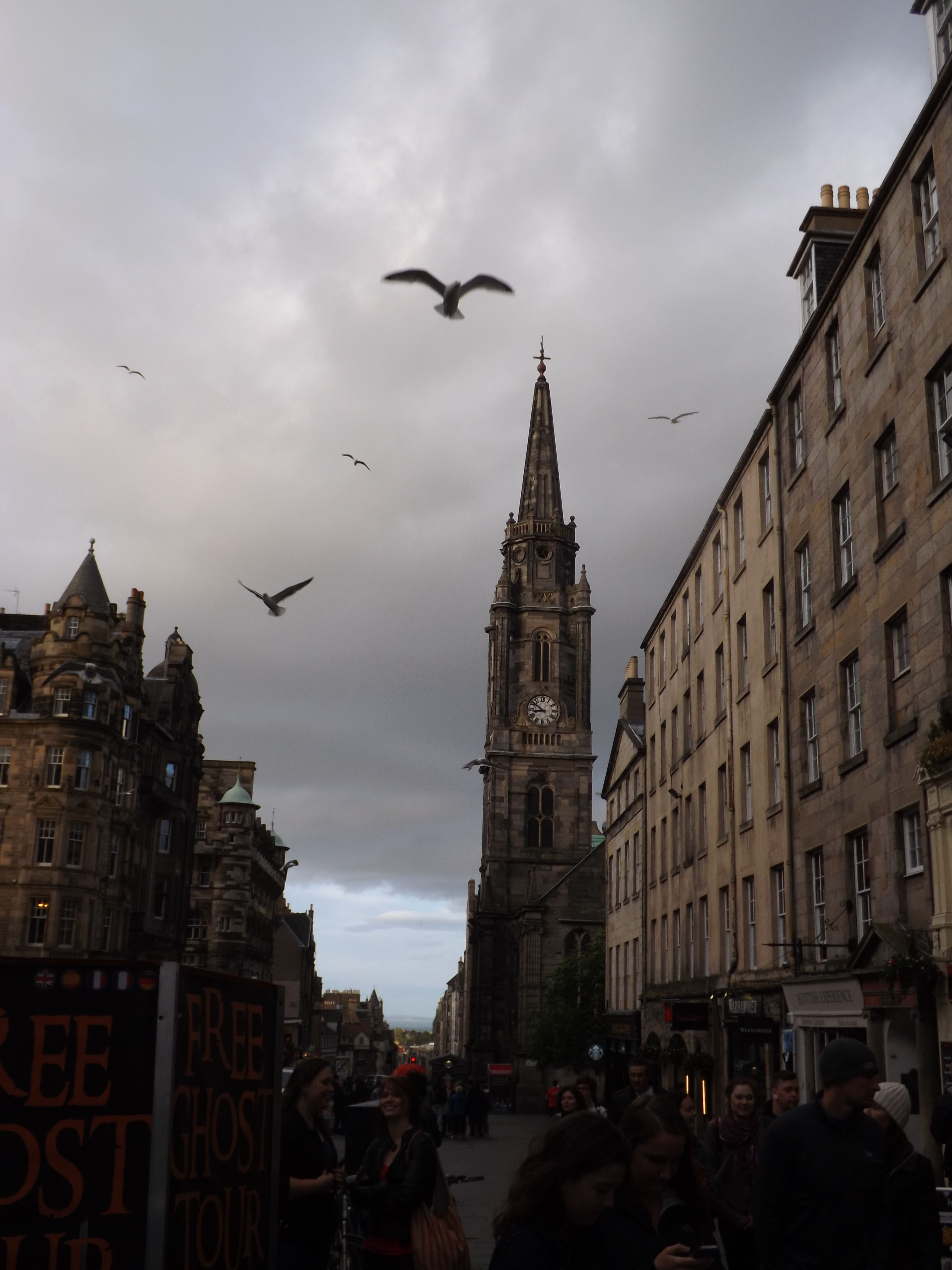 Birds circling above the Royal Mile