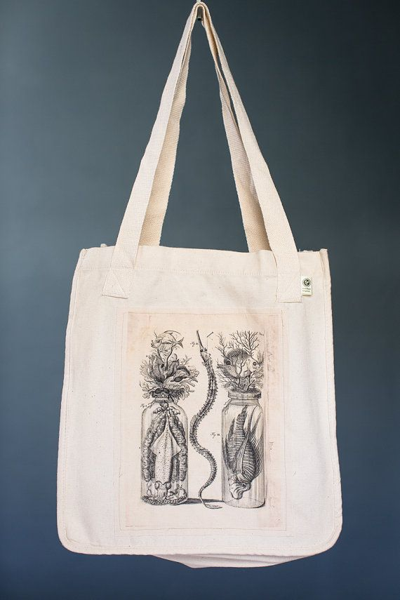 Botanical Specimen Tote, Organic Cotton Canvas Bag, Eco Tote, Seashore Still LIfe, Ocean Tote, Market Tote