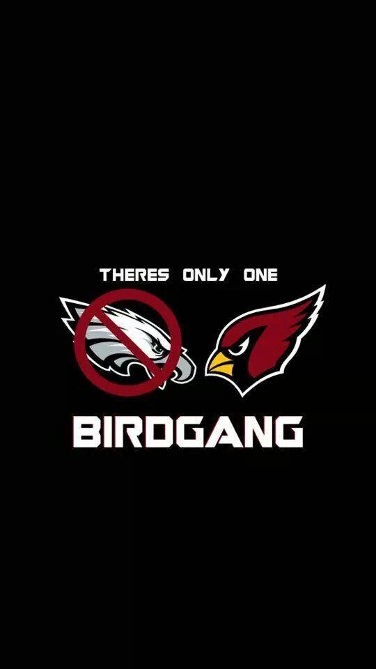 edd1fa47 Haha that's right az cardinals Birdgang | Bird Gang AZ Cardinals ...