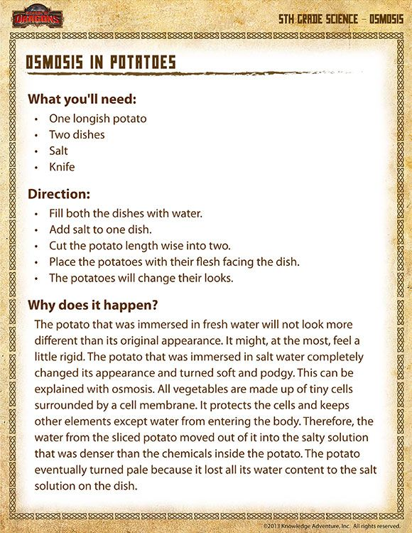 Osmosis In Potatoes Printable Science Experiments For 5th Grade