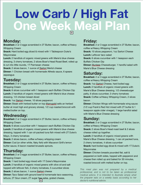 20 Week Diet Plan
