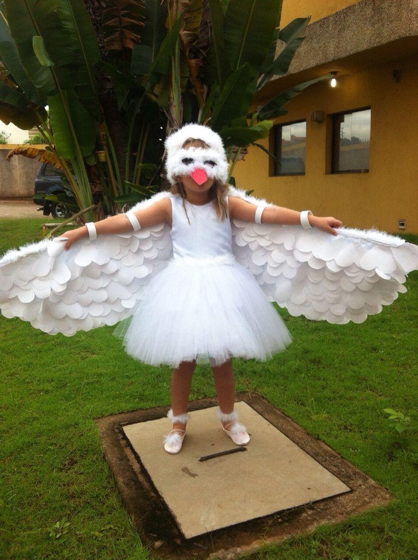 Difraz de paloma de La Paz hecho en casa